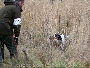 _AAB5673 Ronny Andersson og Jaktfalkens Harley-2